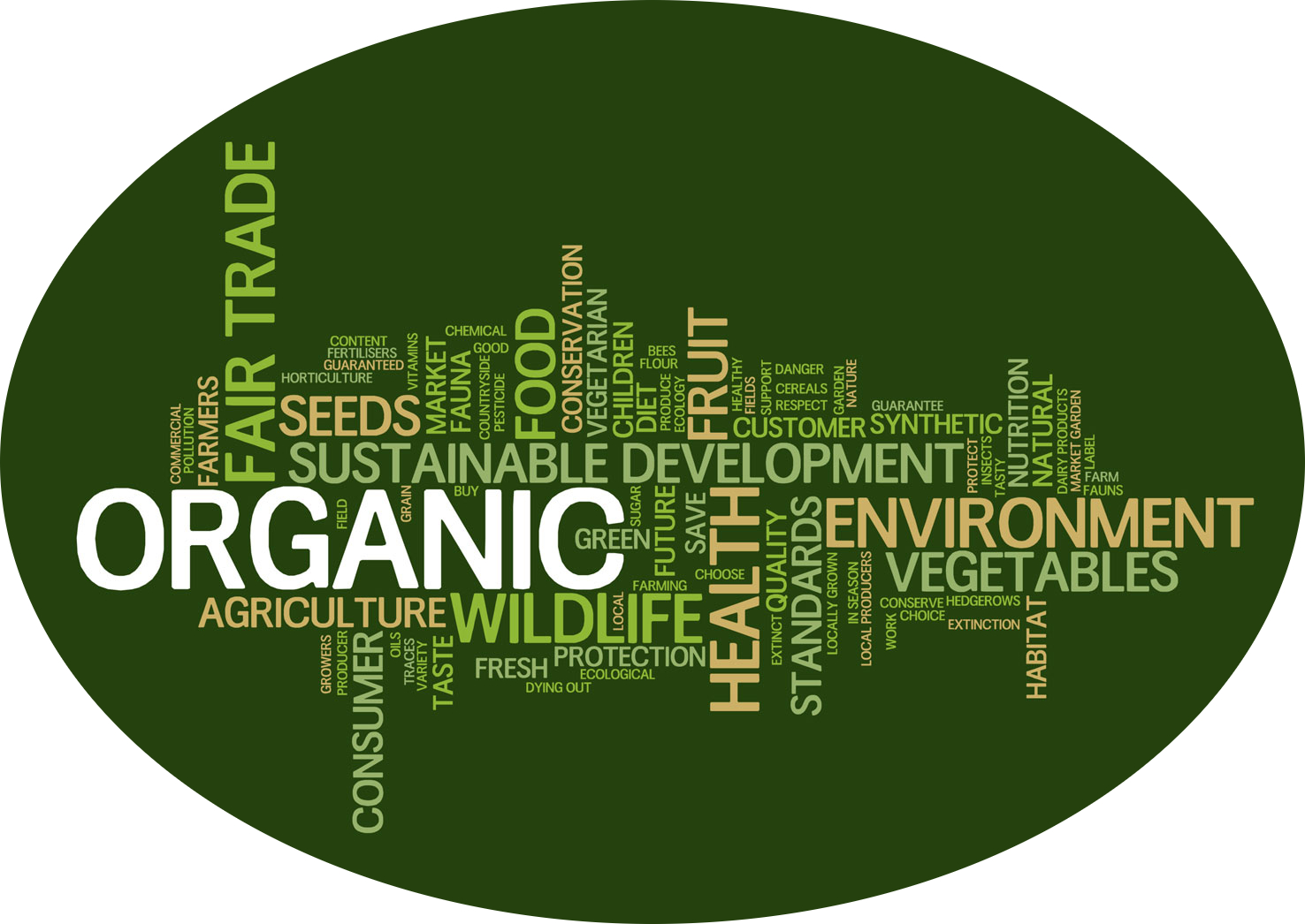 sustainable-food-words1